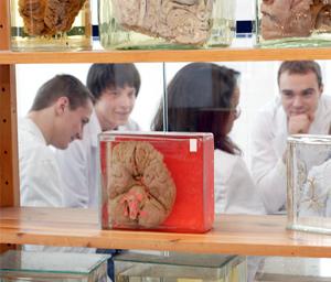Humanmedizinische Fakultät der LUHS