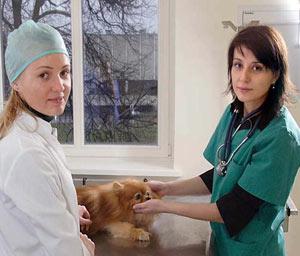 Veterinärmedizinische Fakultät der LUHS