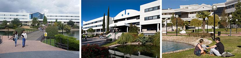 Medizin studieren in Spanien an der UEM