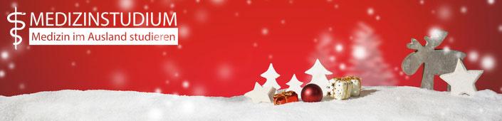 msa weihnachtsangebot