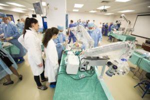Neurochirurgen-Anatomiekurse an der Masaryk University